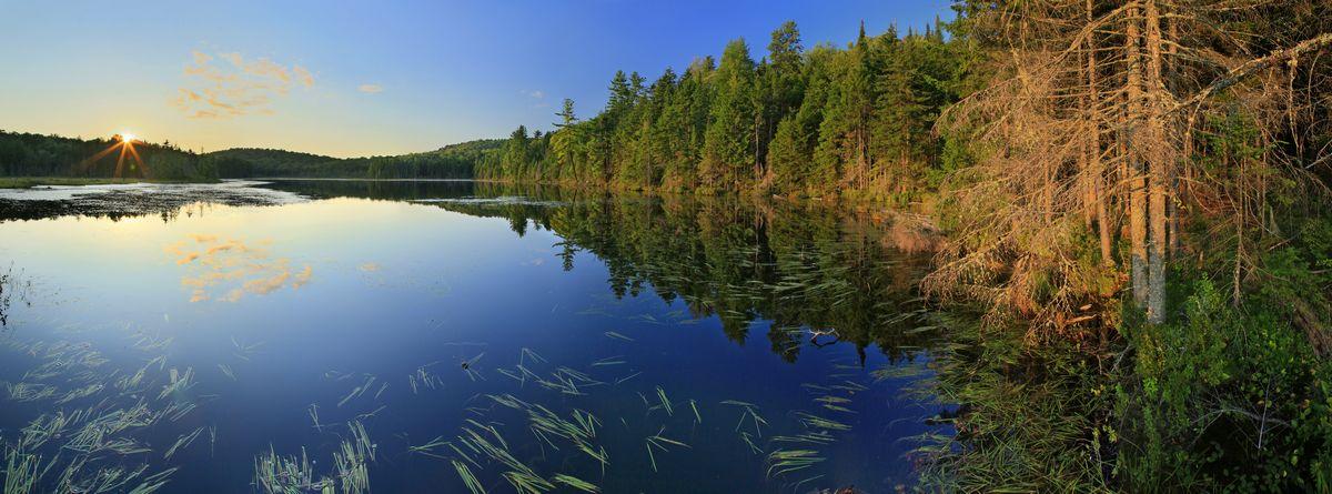 Rankin Pond,Adirondacks,Adirondack Park,bog,pond,lake,wetland,summer,sunset,panorama,sun star,Johnathan Esper, photo