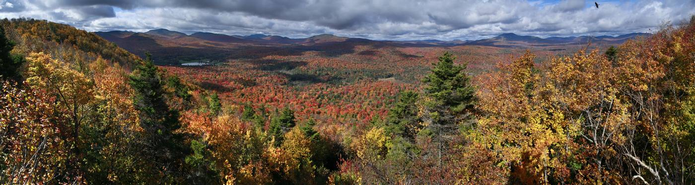 tree-top,treetop,view,Sawyer Mt,Blue Mountain,Wakely Mt,Cedar River,Indian Lake,wilderness,Adirondack,landscape,panorama, photo