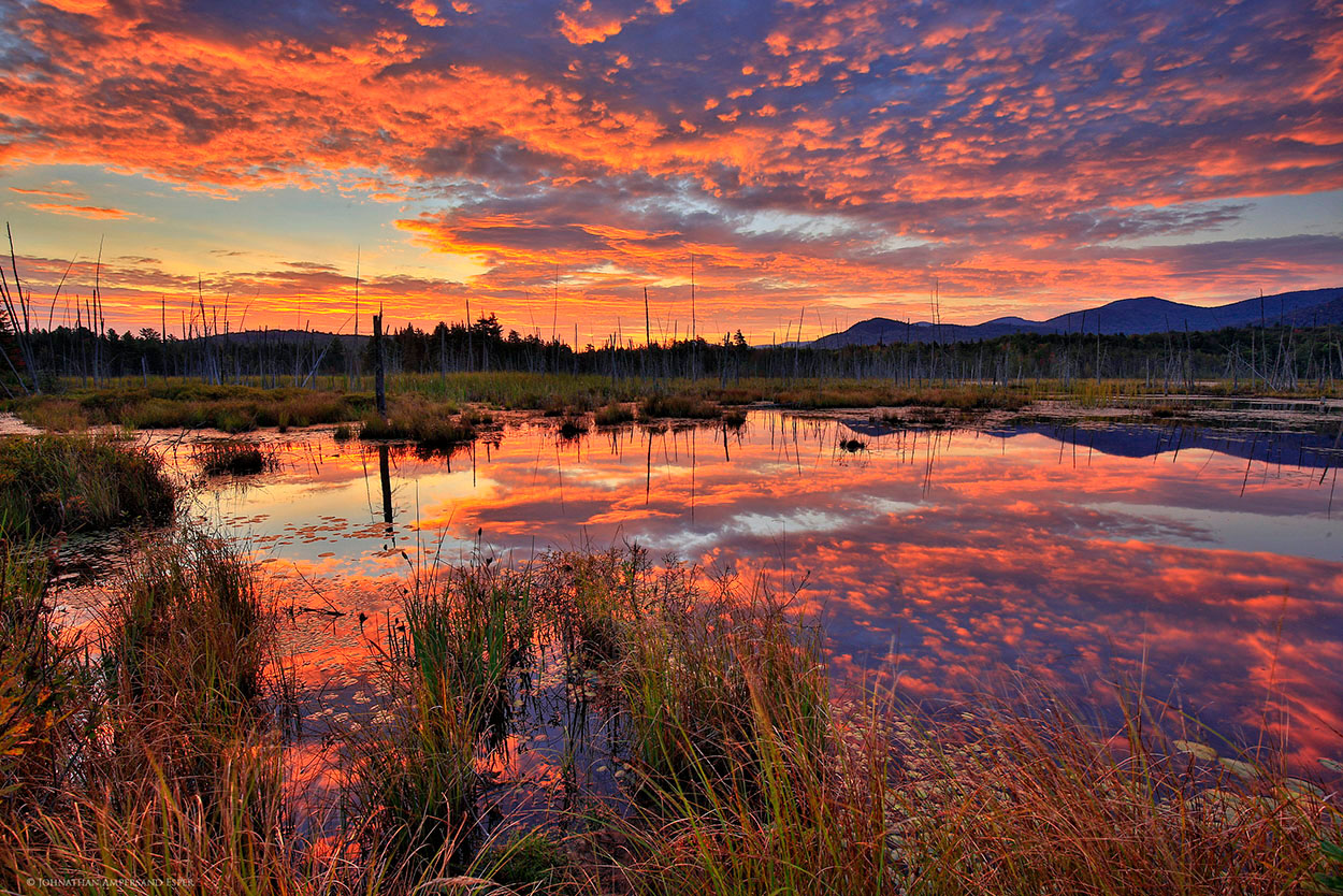 Shaw Pond,brilliant,red,sunrise,Long Lake,Adirondack,wetlands,bog,, photo