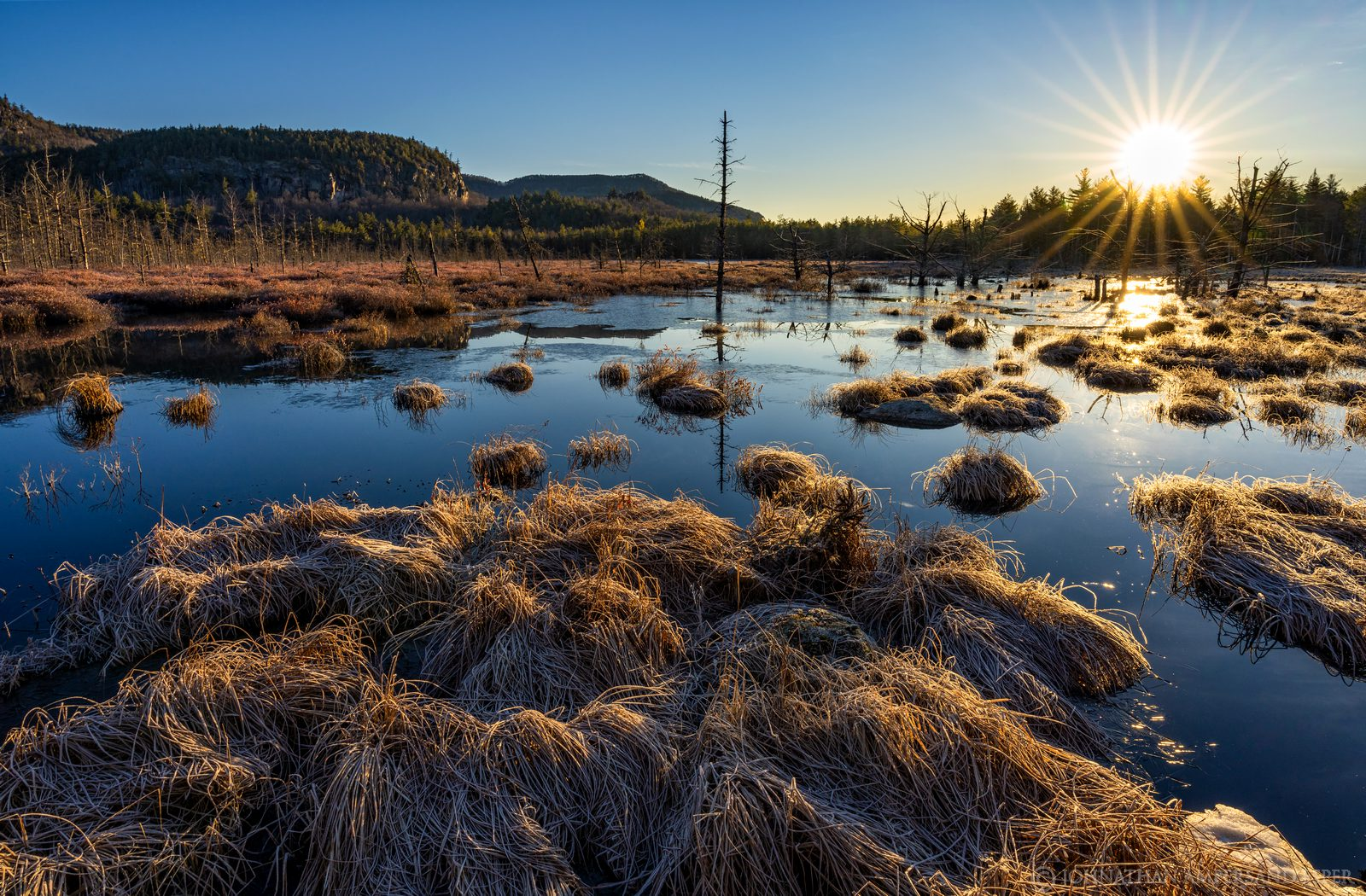 Silver Lake Mt,Silver Lake Mountain,bog,sunrise,March,2020,wetland,grasses,sunrise,