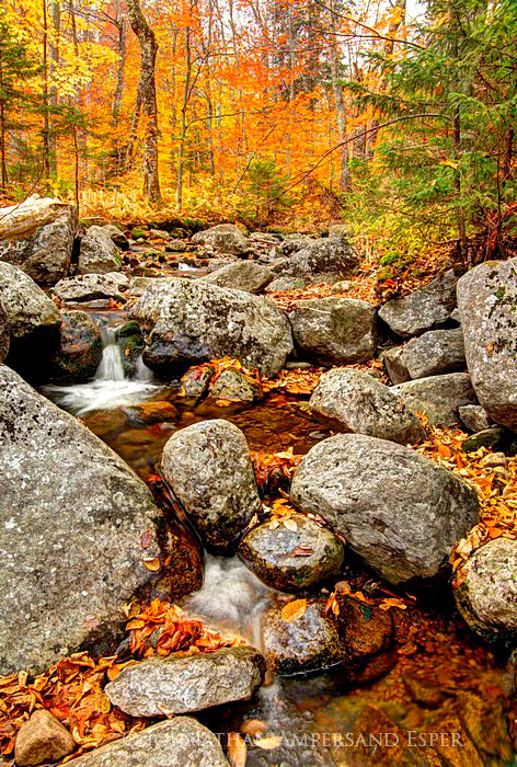 Snowy Mt,stream,boulders,fall,2011,autumn,rocks, photo