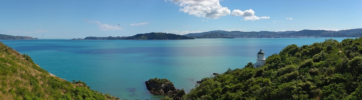 Somes Island,lighthouse,New Zealand,Wellington,harbour,panorama, photo