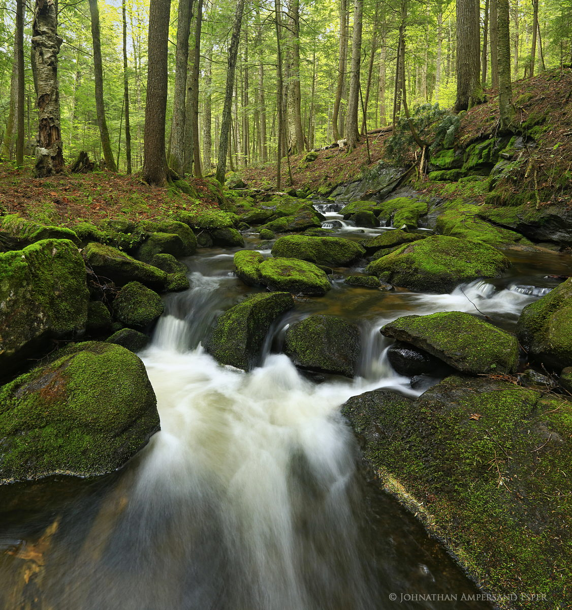 Spectacle Pond Outlet,stream,Spectacle Pond,Schroon Lake,region,mossy,rocks,spring,2014,Johnathan Esper, photo