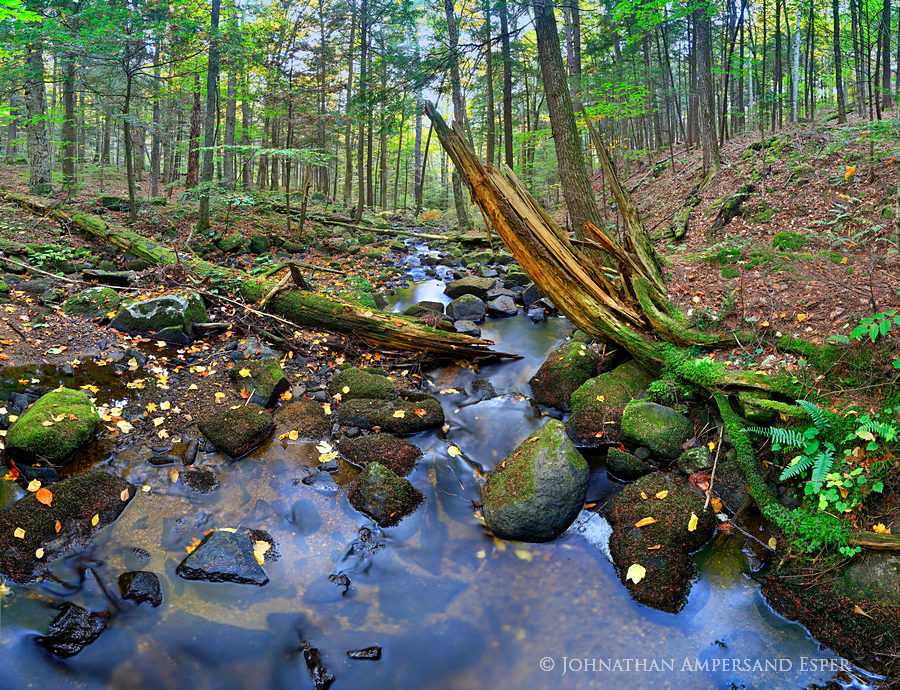 Spectacle Pond Outlet stream,Spectacle Pond Outlet stream,Spectacle Pond,Spectacle Pond Outlet,stream,brook,Adirondack,rainy...