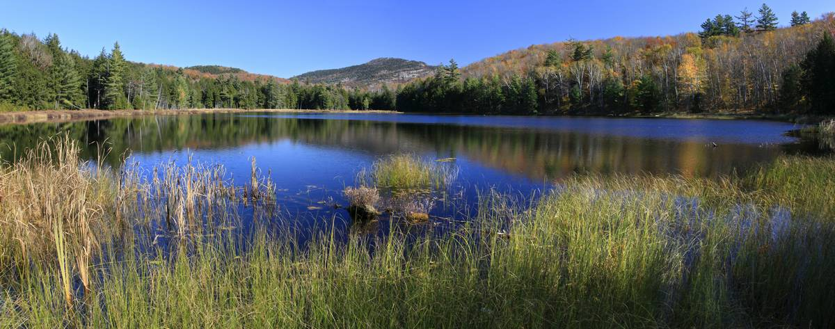 Spectacle Pond,Pharaoh Mountain,Adirondack Park,wilderness,lake,pond,Adirondack, photo