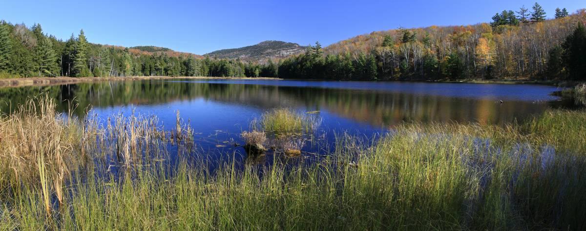 Spectacle Pond,Pharaoh Mountain,Adirondack Park,wilderness,lake,pond,Adirondack, photo