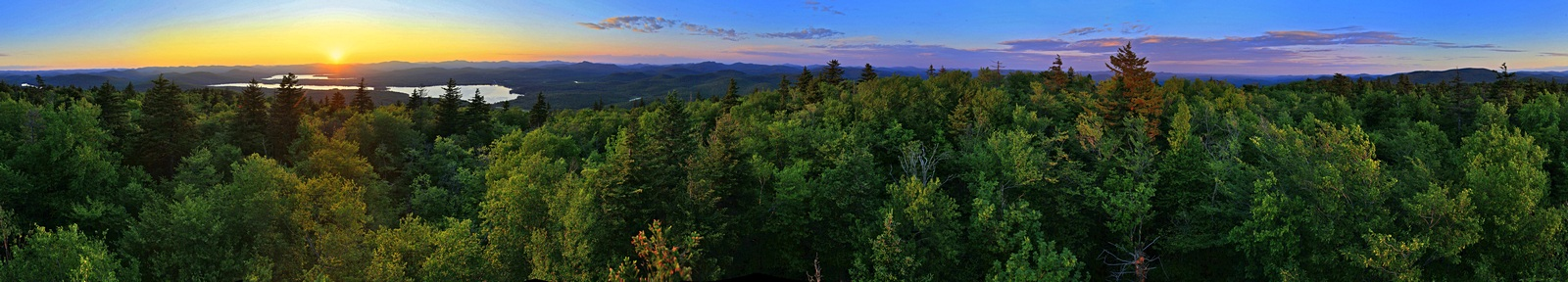 Speculator Mt, treetop, 360, photo