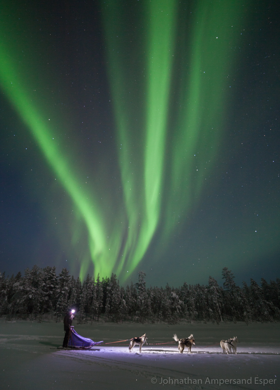 Dogsledding under an aurora borealis near Kiruna, Sweden, while on a 10 day trip in -30 to -20 degree C temperatures.