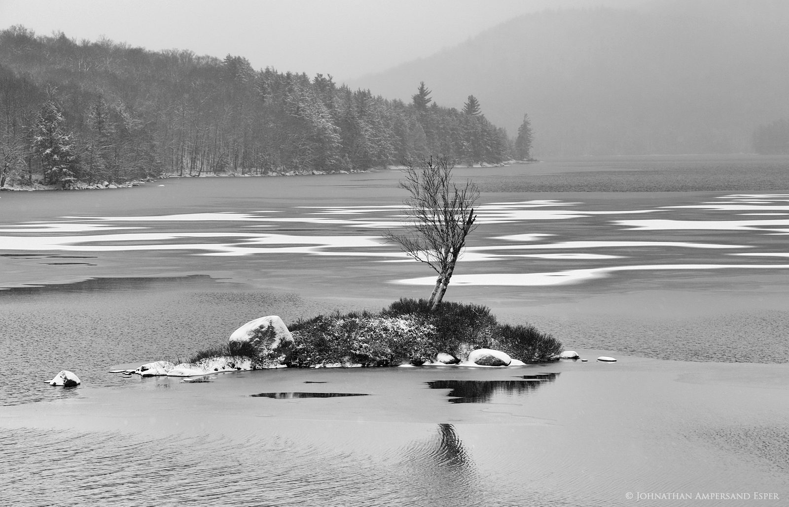 Tupper Lake,black and white,islet,grey,December,day,freezing,ice,freezing lake,lake,tree island,one tree, photo