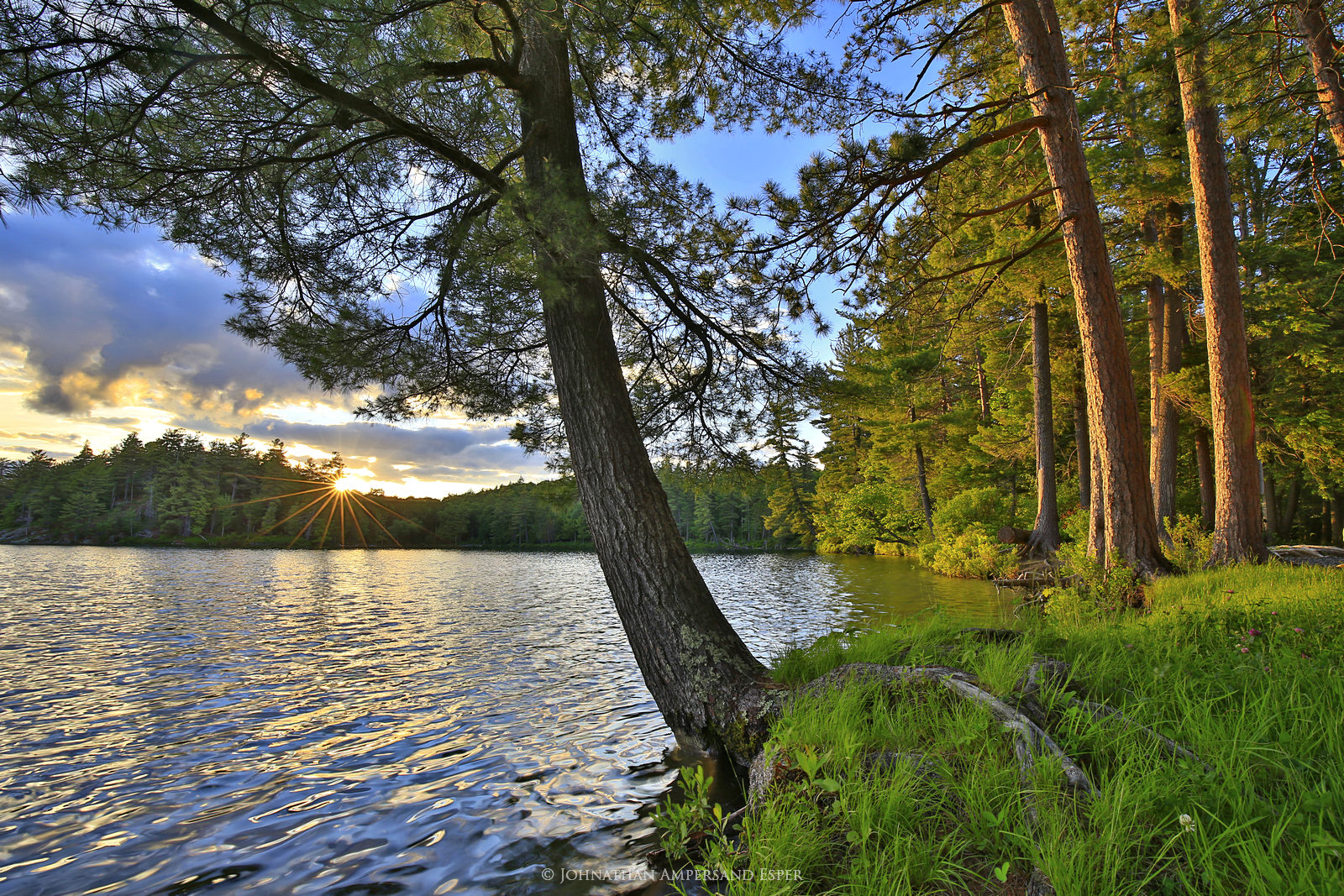 Little Green Pond,St Regis Wilderness,pines,summer,sunset,Adirondack pond,lakeshore,sunburst,, photo