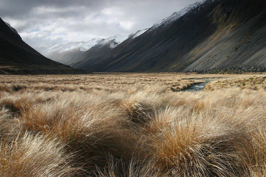 Windon Burn Valley,Mavora Lakes,New Zealand,South Island,mountains,wilderness,landscape,remote,tussock,grass,grasses,str, photo